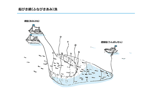船びき網漁法